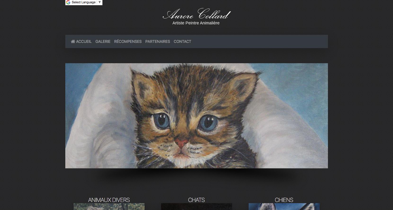 Aurore Collard - Artiste peintre animalière